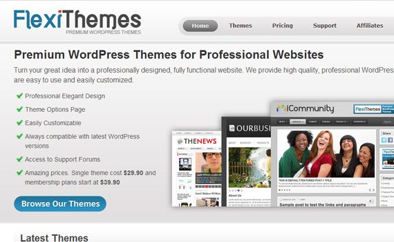 lexithemes-marketplace für premium wordpress themes