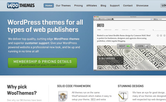 woothemes marketplace