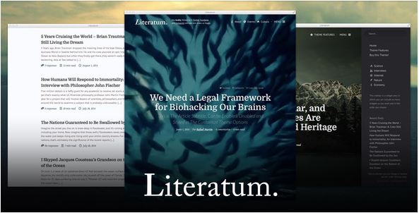 Wordpress Literatum Theme.